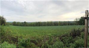 Photo of 596 Hill Road, Harwinton, CT 06791 (MLS # 170109889)