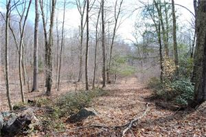 Photo of Lot 4 Deep River Road, Colchester, CT 06415 (MLS # 170183902)