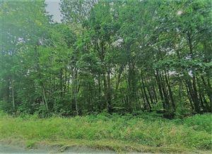 Photo of 3 Stony Brook Lane, Watertown, CT 06795 (MLS # 170214905)