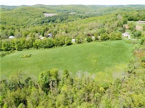 Photo of 132 Spencer Hill Road, Winchester, CT 06098 (MLS # 170207910)