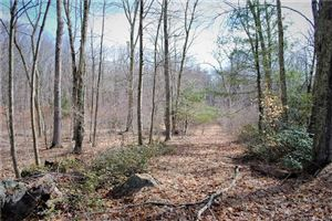 Photo of Lot 3 Deep River Road, Colchester, CT 06415 (MLS # 170183911)