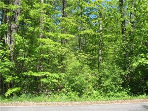 Photo of 0 Old Colebrook Road, Colebrook, CT 06021 (MLS # 170151923)