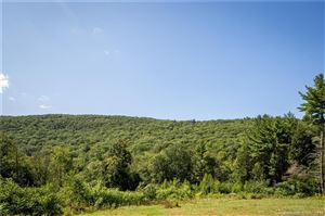 Tiny photo for 124 Canaan Mountain Road, Canaan, CT 06031 (MLS # 170134925)