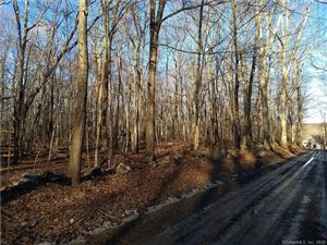 Photo of Lot #2 Pickerel Lake Road, Colchester, CT 06415 (MLS # 170059926)
