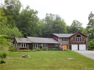 Photo of 459 Route 7, Sharon, CT 06069 (MLS # 170081928)