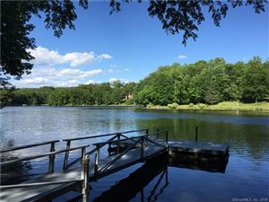 Photo of 11 Cove Road, Brookfield, CT 06804 (MLS # 170061973)