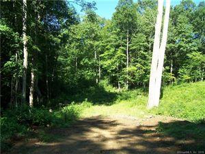 Photo of B RT 44 & MARSH Roads, Willington, CT 06279 (MLS # 170099978)
