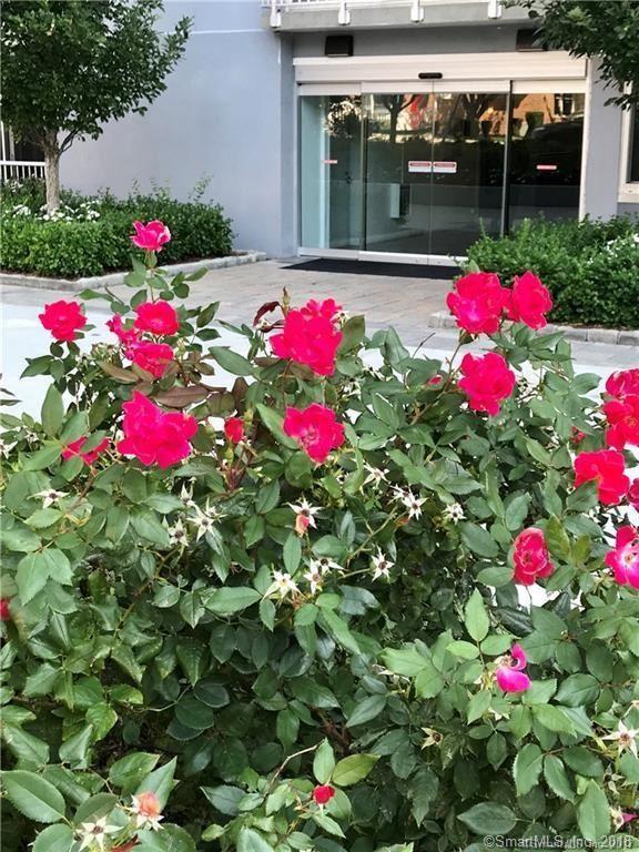Photo for 1 Strawberry Hill Avenue #2E, Stamford, CT 06902 (MLS # 170051987)