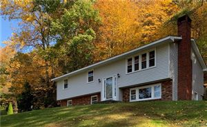 Photo of 16 Johnson Road, Canaan, CT 06031 (MLS # 170245993)