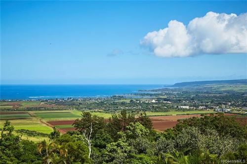 Photo of 67-290 Farrington Highway, Waialua, HI 96791 (MLS # 202015797)