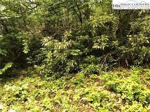 Photo of 410 Pinnacle Ridge Road, Beech Mountain, NC 28604 (MLS # 229014)