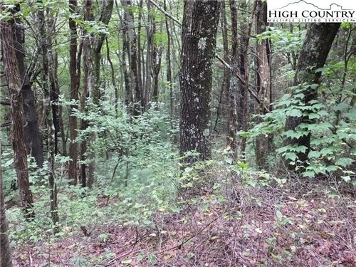 Photo of lot 22 Endless View, West Jefferson, NC 28694 (MLS # 220025)