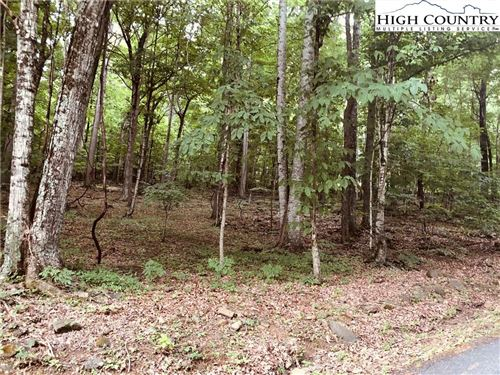 Photo of Lot 10 Candle Street, Jefferson, NC 28640 (MLS # 232029)