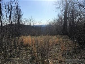 Photo of Lot 6 Grace Mountain Road, Todd, NC 28684 (MLS # 39207032)