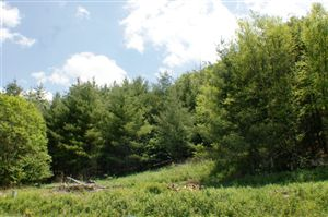 Photo of Tbd Aho Road, Blowing Rock, NC 28605 (MLS # 179035)