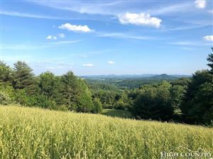 Photo of TBD Pine Branch Road, Mouth of Wilson, VA 24363 (MLS # 215043)