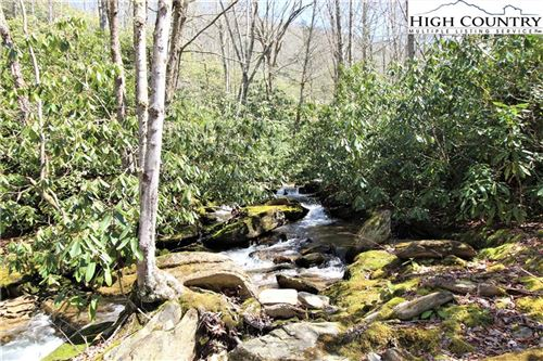 Photo of TBD Blevins Creek Road, Newland, NC 28657 (MLS # 221046)