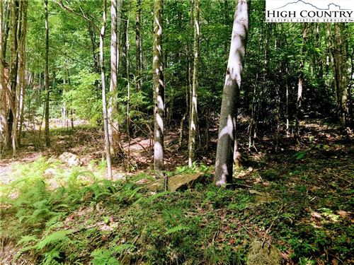 Photo of 103 Sage Knoll, Beech Mountain, NC 28604 (MLS # 221048)