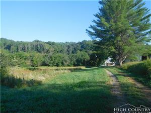 Photo of 3366 NC Highway 93, Sparta, NC 28675 (MLS # 210050)