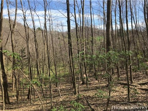 Photo of tbd Rayfield Drive, Boone, NC 28607 (MLS # 214050)