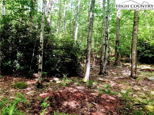 Photo of 105 Sage Knoll, Beech Mountain, NC 28604 (MLS # 221052)