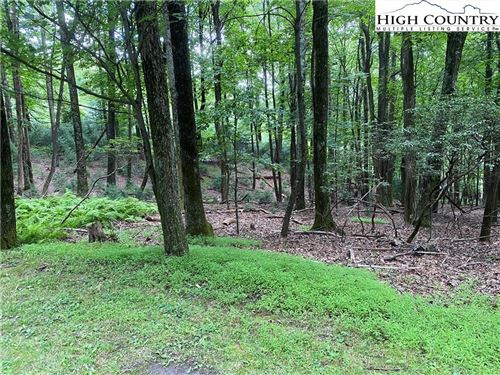 Photo of TBD Wildwood Lane, Roaring Gap, NC 28668 (MLS # 232056)
