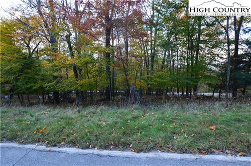 Photo of 1068 Charter Hills Road, Beech Mountain, NC 28604 (MLS # 234058)