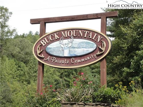 Photo of Lot 20 Bobcat Mountain Road, Purlear, NC 28665 (MLS # 232060)