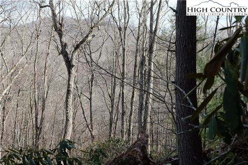 Tiny photo for Lot 4B Wasatch Dr Drive, Boone, NC 28607 (MLS # 220080)