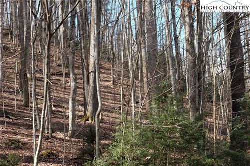 Tiny photo for Lot 6B Twin Rivers Drive, Boone, NC 28607 (MLS # 220087)