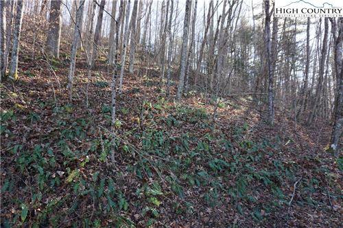 Photo of Lot 10 Highway 88, Creston, NC 28615 (MLS # 227101)