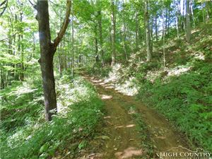 Photo of Tract 1 Rocky Springs Road, Todd, NC 28684 (MLS # 210102)