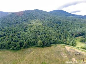 Photo of TBD Mulatto Mountain Road, West Jefferson, NC 28694 (MLS # 208108)