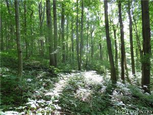 Photo of Tract 3 Rocky Springs Road, Todd, NC 28684 (MLS # 210112)