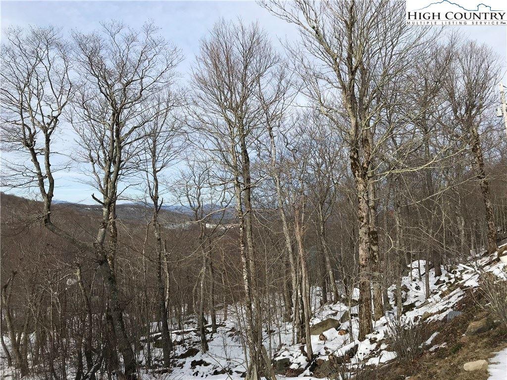 Photo for 107 W Shamrock Lane, Beech Mountain, NC 28604 (MLS # 220112)