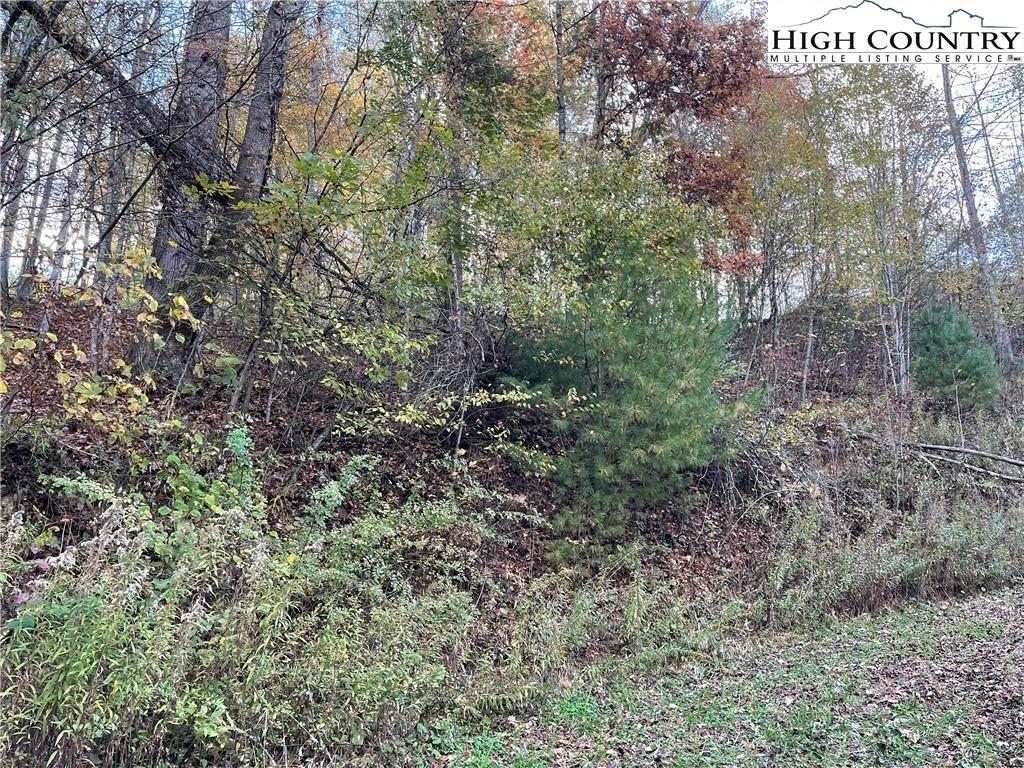 Photo of TBD Ira Powers, Lansing, NC 28643 (MLS # 234116)