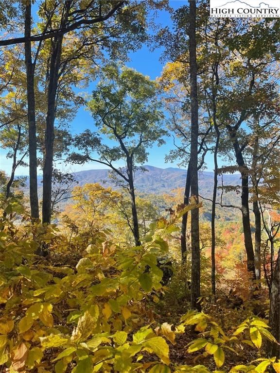 Photo of S43 Stonecliff Trace, Banner Elk, NC 28604 (MLS # 234138)