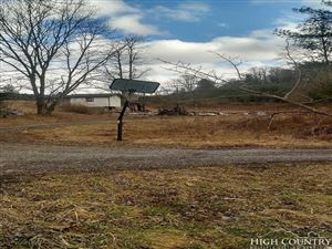 Photo of 830 Buck Mountain Road, Roan Mountain, TN 37687 (MLS # 206159)