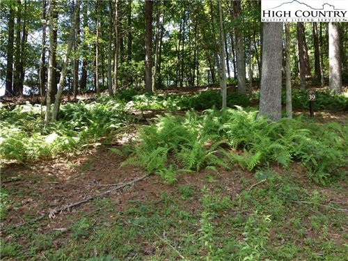 Photo of Lot 39 Emerson Road, West Jefferson, NC 28694 (MLS # 229159)