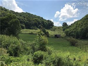 Photo of Tbd Michael Road, Trade, TN 37691 (MLS # 217175)