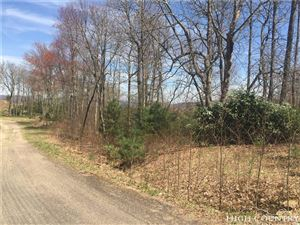 Photo of TBD Cross Mountain Road Road, Mountain City, TN 37683 (MLS # 214176)