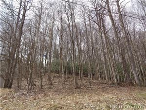Photo of TBD Farthing Hayes Road, Boone, NC 28607 (MLS # 206190)