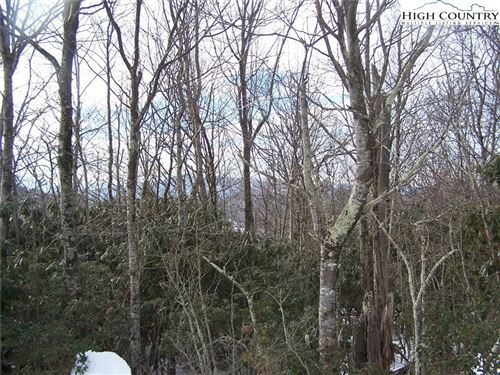 Photo of Lot 56 Algonquin Drive, Boone, NC 28607 (MLS # 233192)