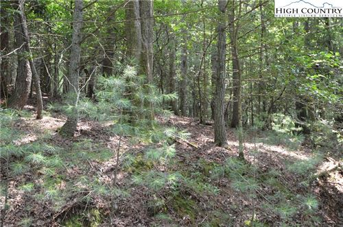 Photo of Lot 27 & 28 Hollynoll, Glade Valley, NC 28627 (MLS # 232210)