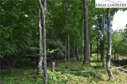 Photo of TBD NC Hwy 194 S, West Jefferson, NC 28694 (MLS # 232211)