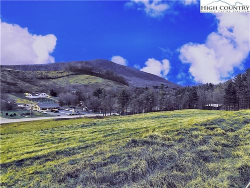Tiny photo for TBD US Highway 221 Business Road, West Jefferson, NC 28694 (MLS # 227212)
