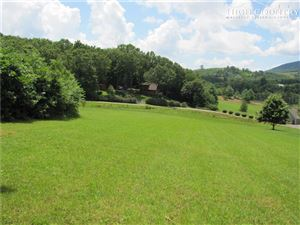 Photo of TBD East Creekside Lane, Jefferson, NC 28640 (MLS # 216223)