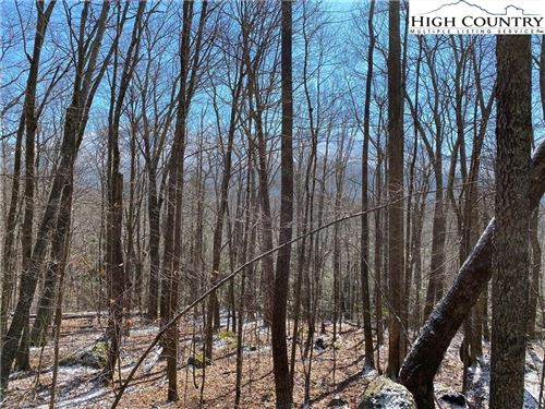 Photo of TBD Letterfern Drive, Banner Elk, NC 28604 (MLS # 220227)