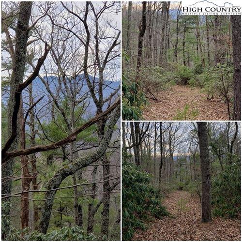 Photo of TBD Nightingale Lane, Blowing Rock, NC 28605 (MLS # 220236)