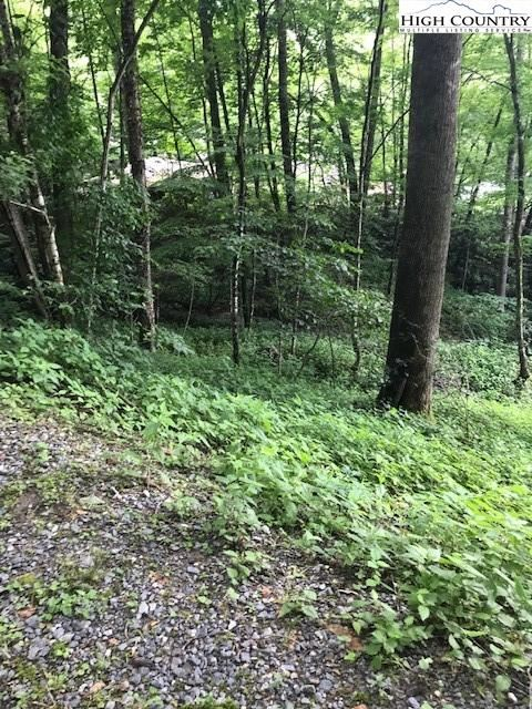 Photo of Lot 42 & 44 Clubhouse Drive Drive, Banner Elk, NC 28604 (MLS # 232237)